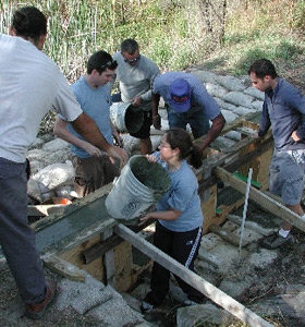 UF Wetlands Club constructing a walkway for the Stormwater Ecological Enhancement Project (SEEP) at the Natural Area Teaching Lab.