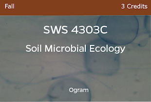 SWS4303C, Soil Microbial Ecology, Ogram, Fall, 3 credits