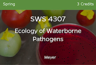 SWS4307 Meyer, Ecology of Waterborne Pathogens, Meyer, Spring, 3 credits