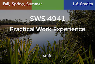 SWS4941, Practical Work Experience, Staff, Fall, Spring, Summer, 1-3 credits