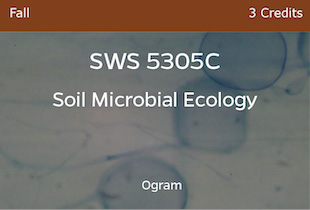SWS5305C, Soil Microbial Ecology, Ogram, Fall, 3 credits