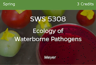 SWS5308, Ecology of Waterborne Pathogens, Meyer, Spring, 3 credits