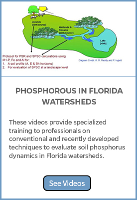 Phosphorus in FL Watersheds video topics